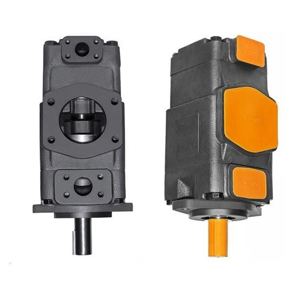 Denison T7DS-B17-1R01-A1M0 Single Vane Pumps