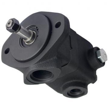 Daikin VZ100C14RJPX-10 Piston Pump