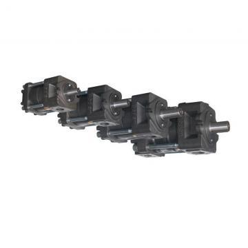 Sumitomo QT6123-200-5F Double Gear Pump