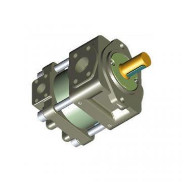 Sumitomo QT6253-125-63F Double Gear Pump