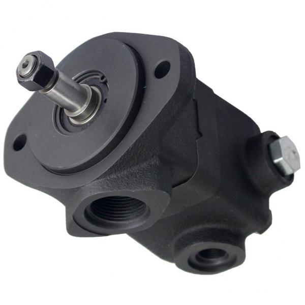 Daikin RP38C13JP-37-30 Rotor Pumps #3 image