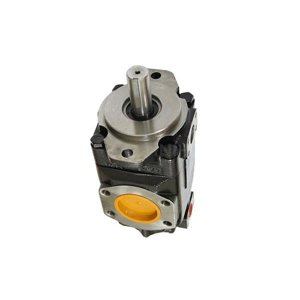 Denison PV15-1R1B-L00 Variable Displacement Piston Pump #3 image