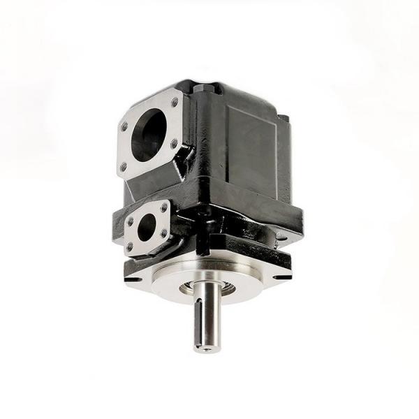 Denison PV15-1R1B-L00 Variable Displacement Piston Pump #1 image