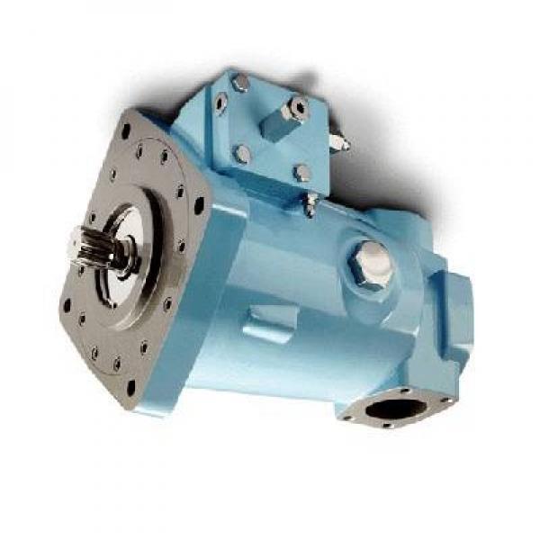 Denison PV15-2L1C-L00 Variable Displacement Piston Pump #1 image
