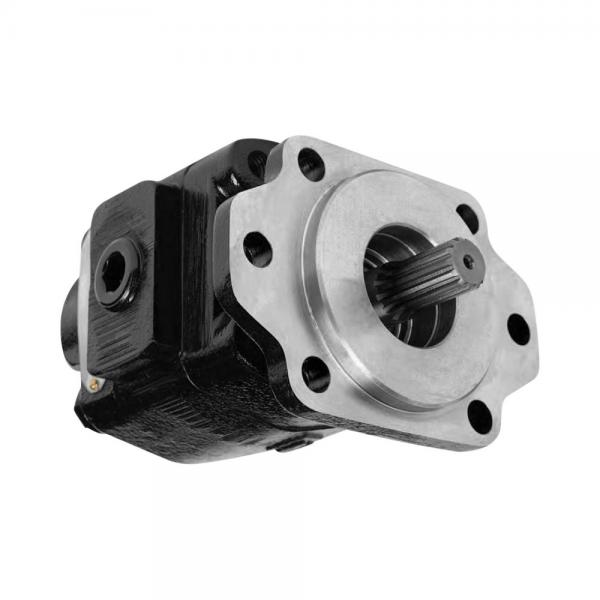 Parker PV016R1K1A1NFFC Axial Piston Pump #3 image