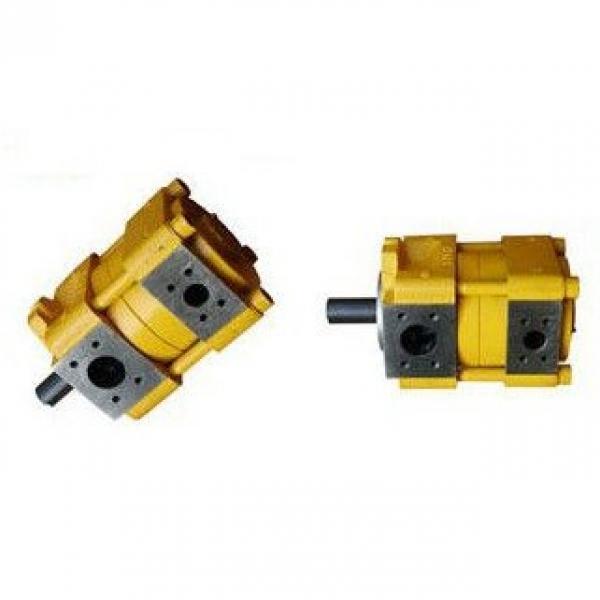 Sumitomo QT42-25L-A Gear Pump #3 image