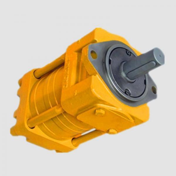 Sumitomo QT5223-50-6.3F Double Gear Pump #1 image