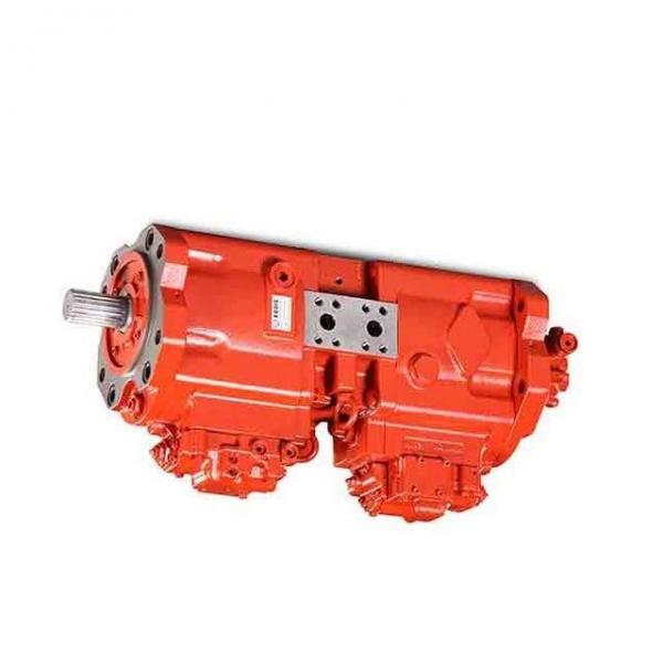 Sumitomo QT5223-50-6.3F Double Gear Pump #3 image