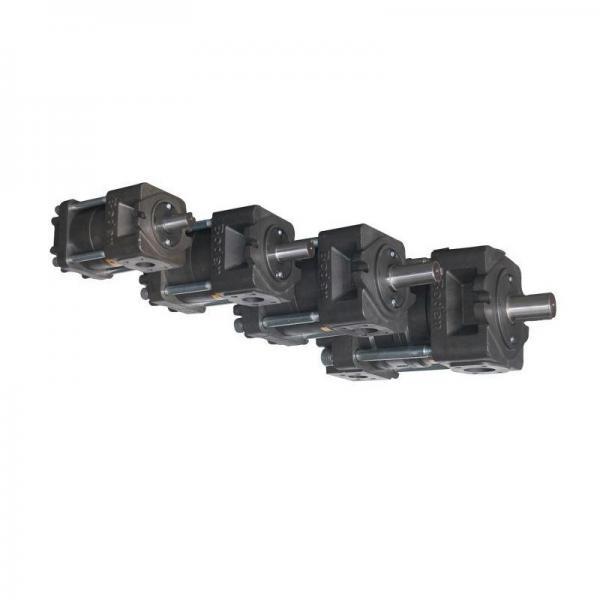 Sumitomo QT4233-25-12.5F Double Gear Pump #3 image