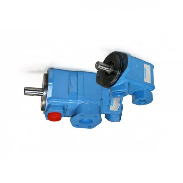 Vickers PVQ20-B2R-SSES-21-CM7-12 PVQ Series Piston Pump #1 image