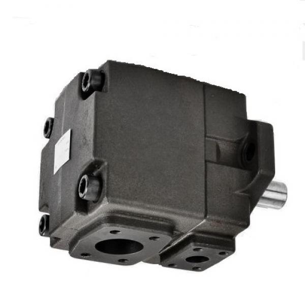 Yuken PV2R14-10-200-F-RAAA-4222 Double Vane Pumps #2 image